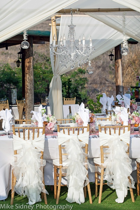 17 Best Images About Chair Covers Sashes Ties On Pinterest Gold Chairs Tra