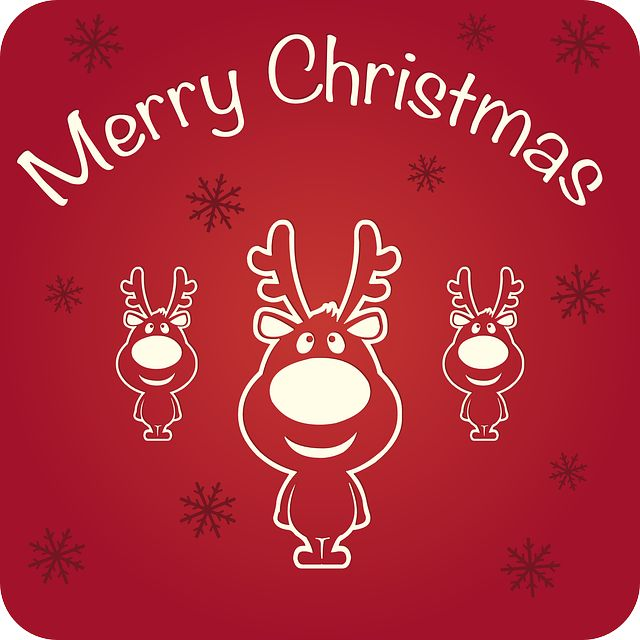 Wishing you a very Merry Christmas and a Happy New Year :) #merrychristmaswishes #merrychristmas