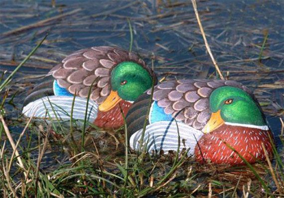 Rock Painting Tutorial - How to paint a mallard duck on rock via Etsy