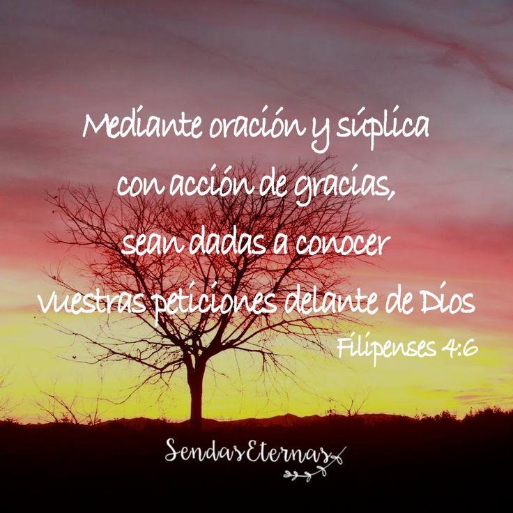 #ACTITUD : ORACION CONSTANTE EN GRATITUD https://sendaseternas.blogspot.com.es/2017/01/actitud-oracion-constante-en-gratitud.html #Versiculobiblico #Dios #Sendaseternas
