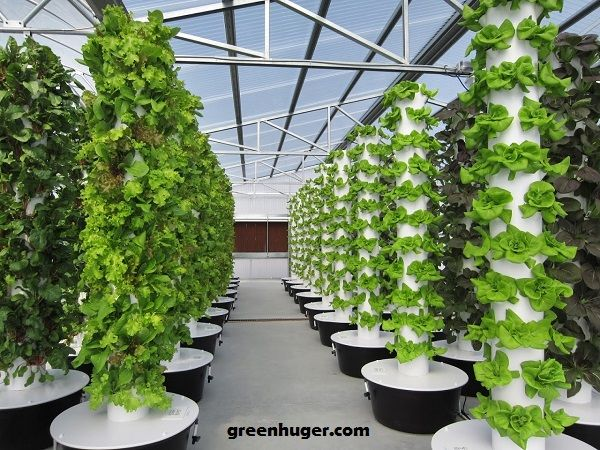 Hydroponic Tower System Grow Systems