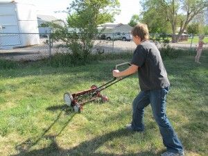 Pros and cons of a manual lawn mower. I've always wanted one, but not sure I have the strength anymore!