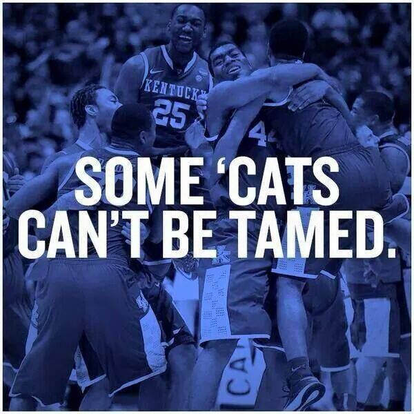 Basketball Championship Quotes: Best 25+ Kentucky Quotes Ideas On Pinterest