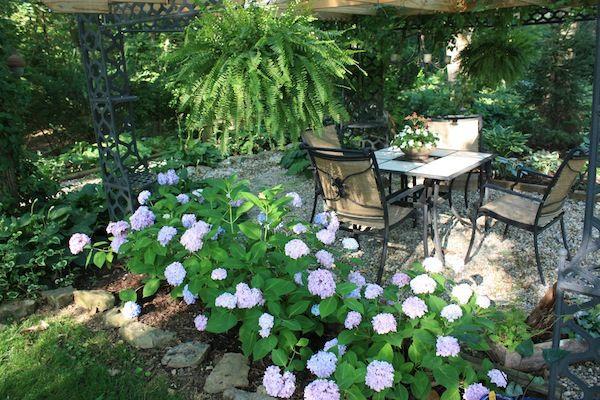 Debbie Clark's garden shows how to create smaller, intimate spaces in the landscape. garden vignette debbieclarkIMG_4518