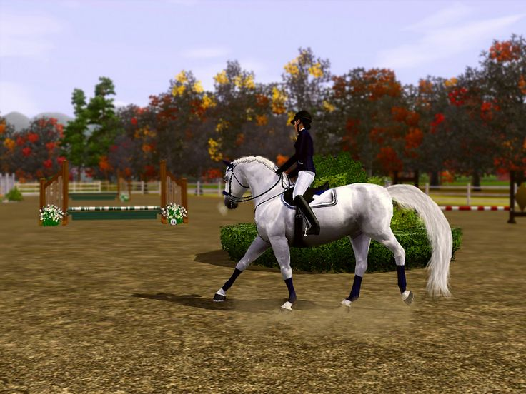 Sims 3 Horses Jumping   day 3 show jumping rollback approaching jump 5a