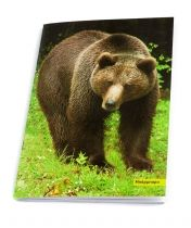 Bear Barbara. Notebook featuring the bears which are hosted in ARCTUROS' Brown Bear Sanctuary.