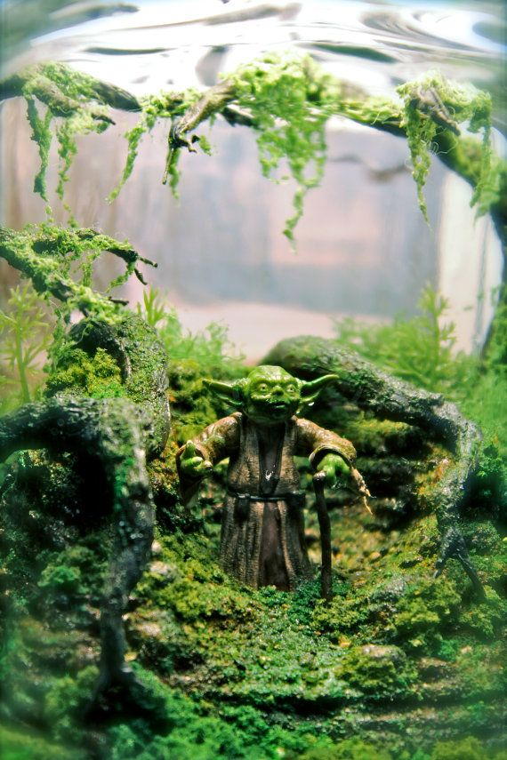 Yoda Bowl Deluxe Zen Garden Dagobah Terrarium / by Megatone230