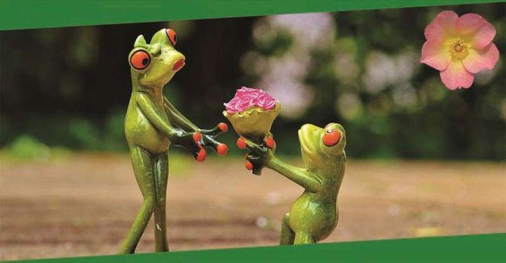 Ich habe nichts gegen den Valentinstag, aber gegen Sexismus. Und leider geht beides oft Hand in Hand. http://lexasleben.de/sexismus-valentinstag-feminismus/