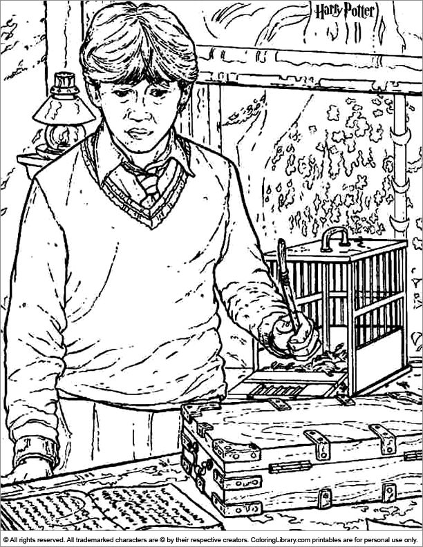 278 best images about Harry Potter Coloring Pages on ...