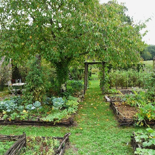 Back Yard Potager: Unlock The Secrets To A Perfect Garden Layout! (A