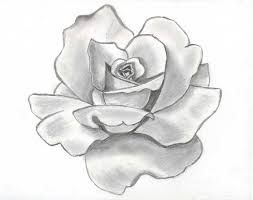 87 best andrea images on Pinterest  Drawing ideas Drawings and
