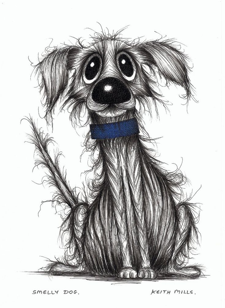Понимание, прикольный рисунок щенка