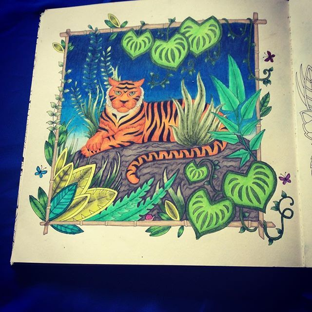 1000 Images About Magical Jungle Johanna Basford On