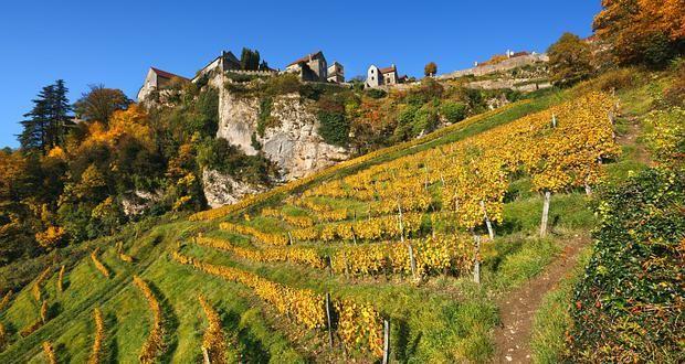 Le village de Château-Chalon et son vignoble