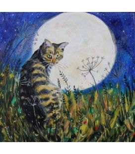 The Cat and the Moon. Annabel Langrish