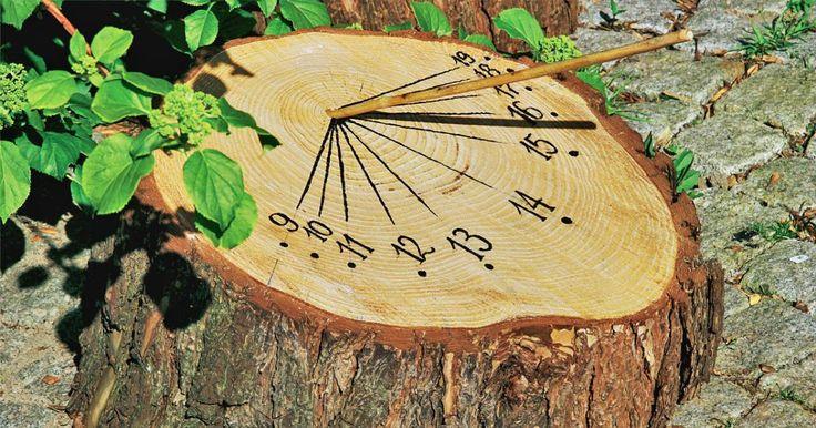 Seit jeher versucht der Mensch seinen Tag zu strukturieren. Damit dies gelingt braucht es eine verlässliche Möglichkeit die Zeit zu messen. Dafür gibt es verschiedene und eine davon bietet sich als schmückende Ergänzung für den heimischen Garten an – die Sonnenuhr. Wir zeigen Ihnen, wie Sie eine Sonnenuhr ganz einfach selber bauen können.