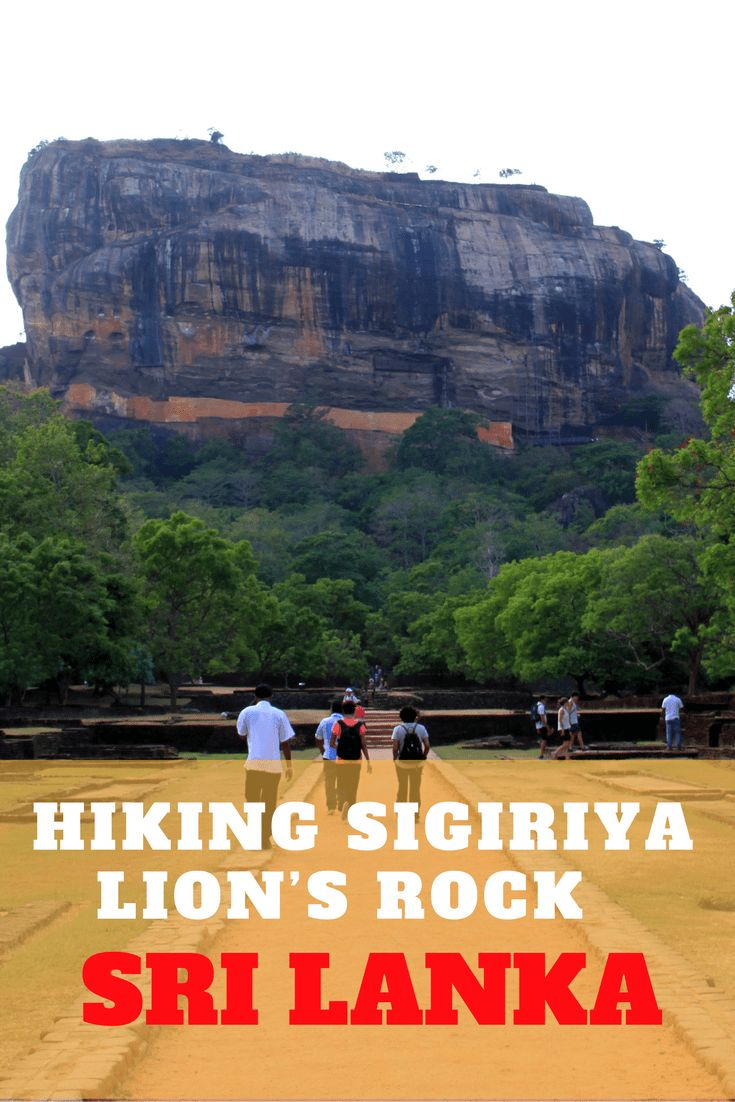 The Sigiriya fortress also called Lion's Rock is one of the most visited tourist destination in Sri Lanka. If you enjoy a challenging hike of over 1200 steps, then make sure to include it in your itinerary. The hike to this ancient city, is well worth the effort.