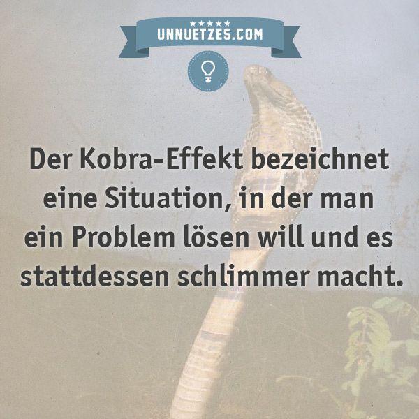 Warum der Effekt so heißt: http://www.unnuetzes.com/wissen/11344/kobra-effekt/