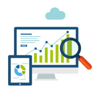 A complete, company analysis and audit includes your site and campaign's research for getting a clear understanding of your industry. It also determines your current position within your marketplace versus your main competitors.