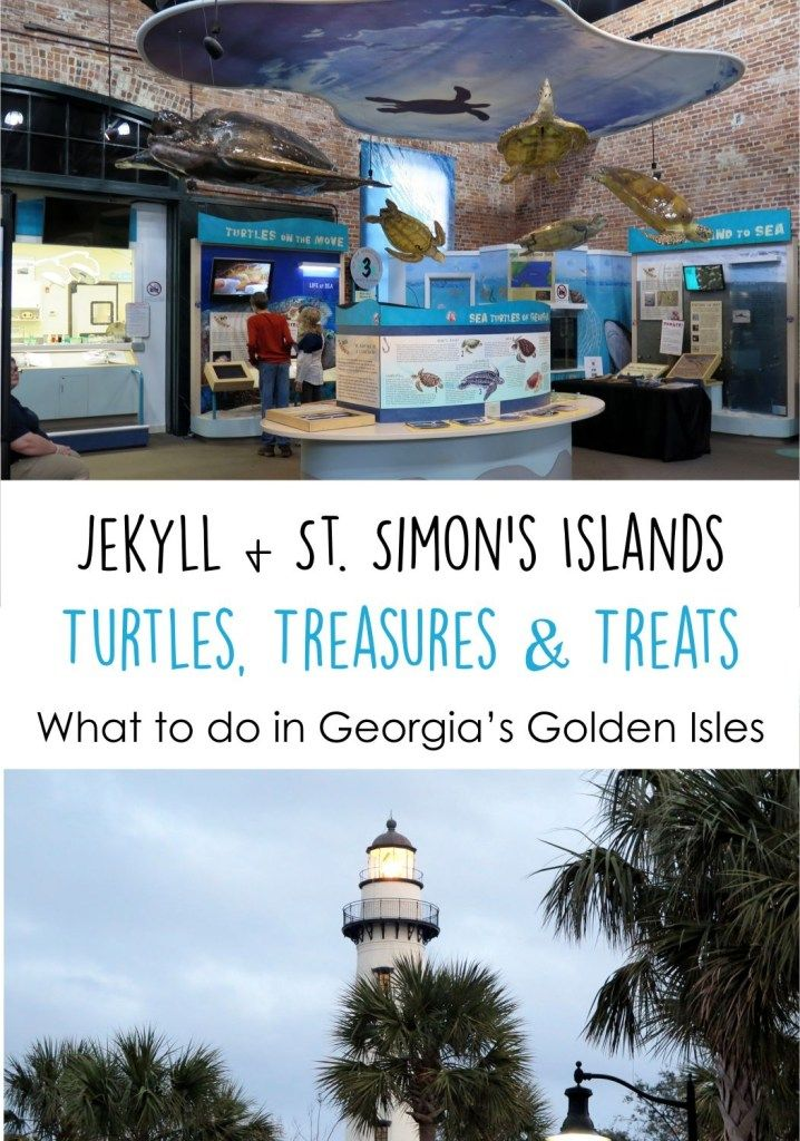 Turtles, Treasure Hunting and Treats: Things To Do in Jekyll Island, Georgia