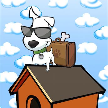 Airline Pet Travel Policies - Take Paws – The official pet travel blog of GoPetFriendly.com
