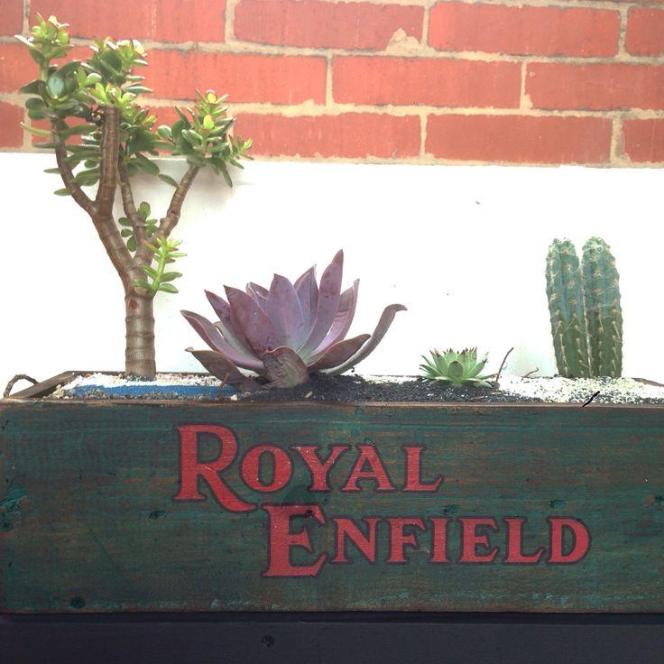 Caja Royal Enfield