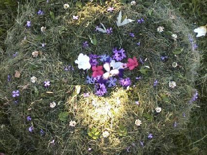 A pretty flowered nest!!! <3