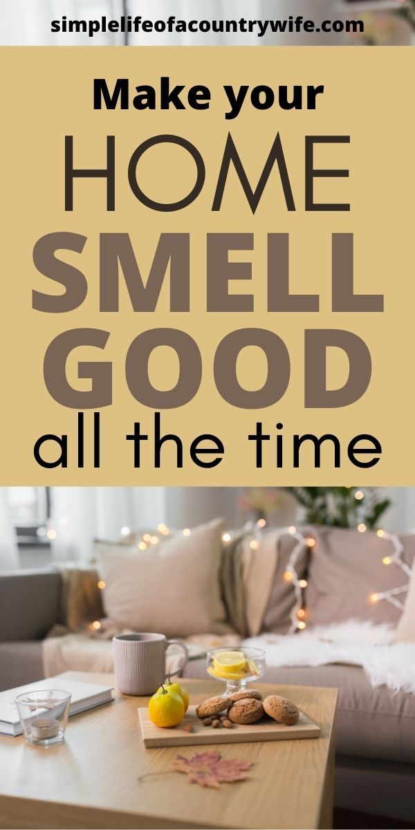 How To Get Rid Of Horrible Smell In House