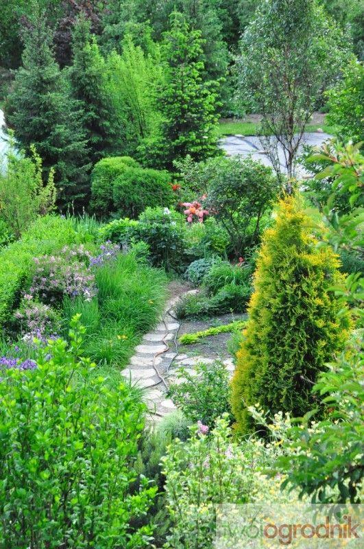 Widok z góry na fragment ogrodu