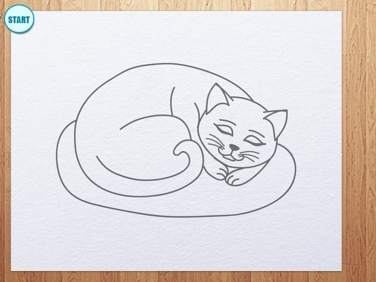17 best images about summer fun for kids on pinterest for Fun to draw cat