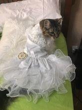 Tienda Online Varios de Lujo Vestido de Princesa Vestido de Novia de Perro Gato Mascota Cachorro falda ropa Para Mascotas Tutu Falda Traje de Novia Suministros XS a 2XL | Aliexpress móvil