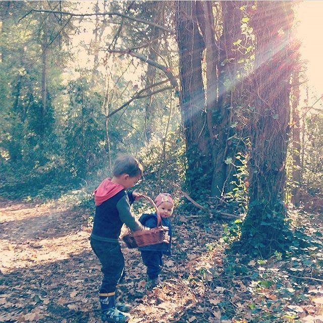 Kids in their natural element enjoying the sunshine and collecting fallen forest goodies.  Regram from @lorelai_august_river and @august_river   #activekids #childhoodunplugged #kids #littleandbrave #toddlerlife #humansofjoy #purenewzealand #naturesgift