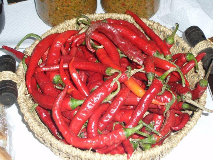 Filetto si veste di rosso con il Festival del Peperoncino Piccante - L'Abruzzo è servito   Quotidiano di ricette e notizie d'AbruzzoL'Abruzzo è servito   Quotidiano di ricette e notizie d'Abruzzo