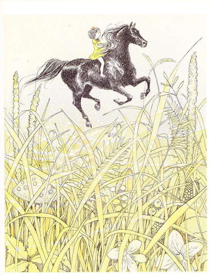 best all the pretty horses ideas pretty horses  the marlowe bookshelf all the pretty horses susan jeffers 1987