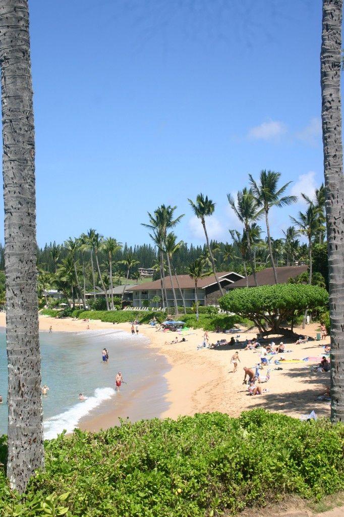 Napili Bay With Images Napili Bay Maui Napili Bay Napili Beach