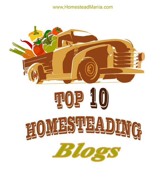 Top 10 Homesteading Blogs - Useful list - See which ones are in the top 10!