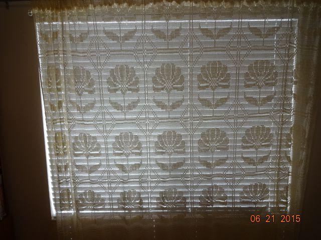 Crocheted Curtain #2