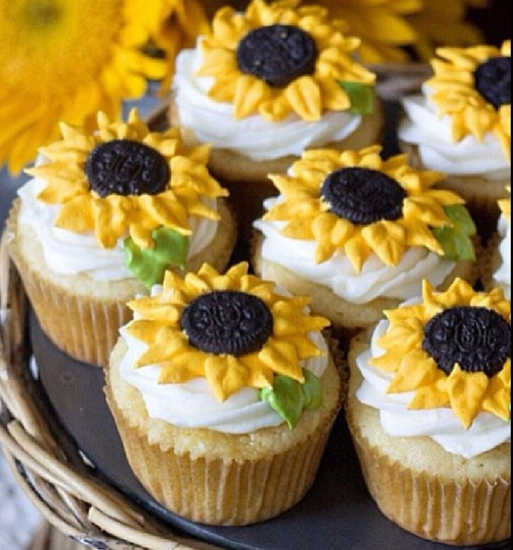 Cute Sunflower Cupcakes Birthday Ideas Pinterest