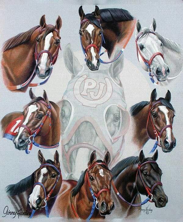 Pin by Sue Resch on Gi...