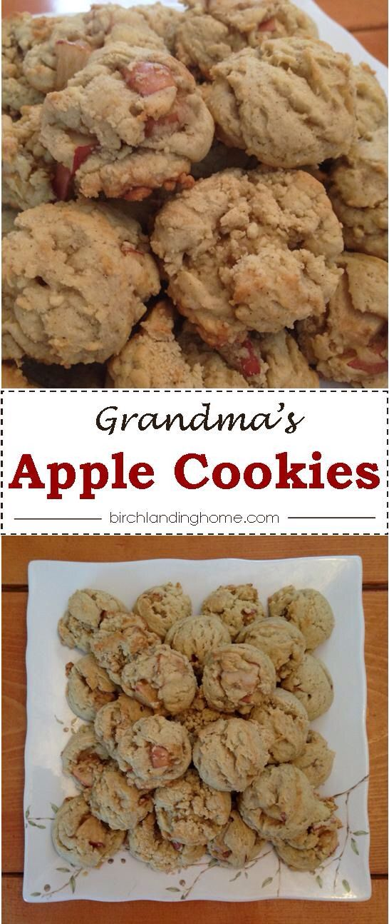 Grandma's Apple Cookie Recipe - Perfect for Fall or any time of the year!  Light spiced and not too sweet, perfect!