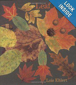 Amazon.com: Leaf Man (Ala Notable Children's Books. Younger Readers (Awards)) (9780152053048): Lois Ehlert: Books