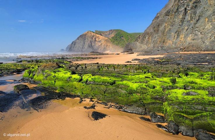 Barriga beach - Portugal - surge após uma curva apertada da estrada, no troço final de um vale largo e muito verde. Começamos por ver relvados naturais, tanto na foz da pequena ribeira como nas dunas baixas que a circundam, depois um amplo areal protegido por arribas imensas e negras.