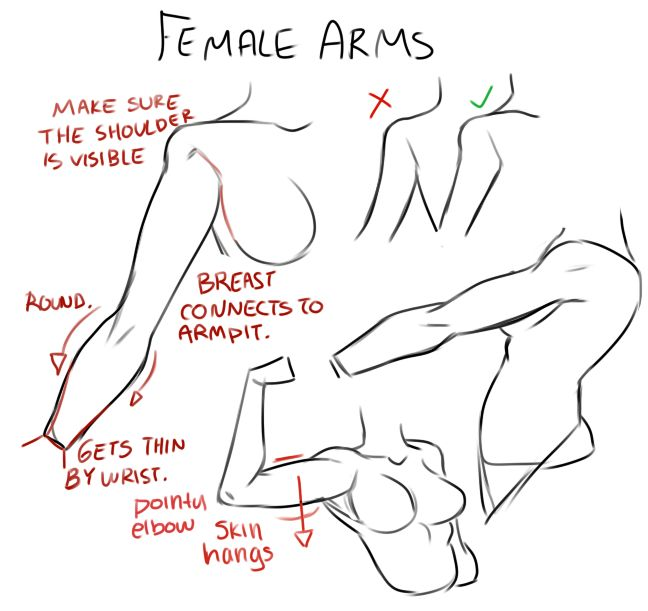 Female arms. ✤ || CHARACTER DESIGN REFERENCES | キャラクターデザイン • Find more at https://www.facebook.com/CharacterDesignReferences