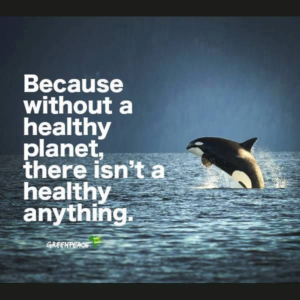 Without A Healthy Planet There Isn T A Healthy Anything