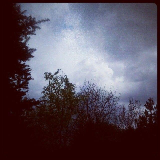 Életem egy vadregény - vihar előtti bambulás az égre fel.                  ketcica készítette ezt a képet.