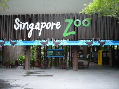 Cool Singapore Zoological Gardens | Singapore places for kids and events for children - KidslanderSingapore places for kids and events for children  Kidslander pic #Singapore #Zoo