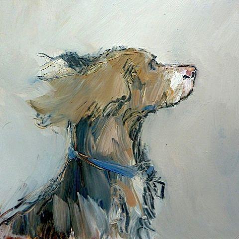 Oscar, Oil on panel, 20x20cm (8x8in) Tom Homewood