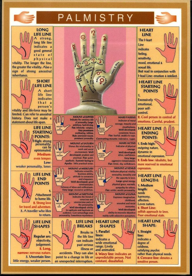 There are plenty of books out there to help you if you want to learn to have palms read, here is a basic chart... For more in-depth reading, go to someone who specialises in Palm readings :)