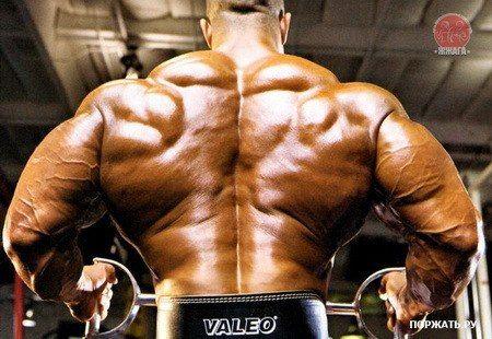 """33 плюса тренировок с железом.   1.Регулярные физические упражнения смогут помочь вам сбросить лишний вес, в частности жир (нагрузка на сердце уменьшится.)   2.Ваше тело """"научится"""" поднимать до максимума уровень кислорода в крови, следовательно, все внутренние органы будут получать гораздо больше кислорода. Это благотворно скажется на их функционировании и сопротивляемости болезням. Стенки сосудов становятся более упругими.   3.Ваш сердечный ритм в состоянии покоя снизится, потому что сердце…"""