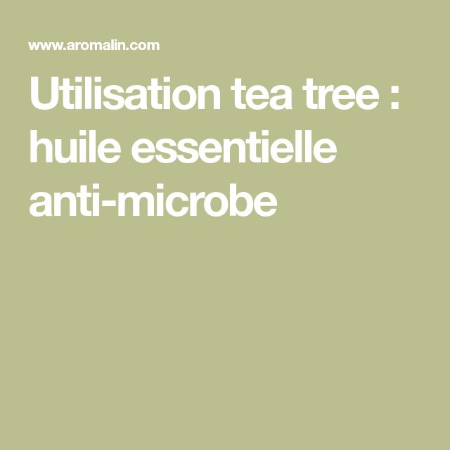 Utilisation tea tree : huile essentielle anti-microbe